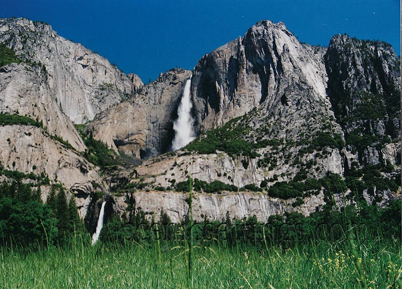 Upper and Lower Yosemite Falls From Cook's Meadow